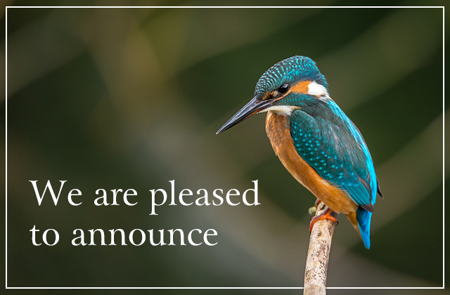 We are pleased to announce
