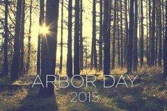 Arborday 08