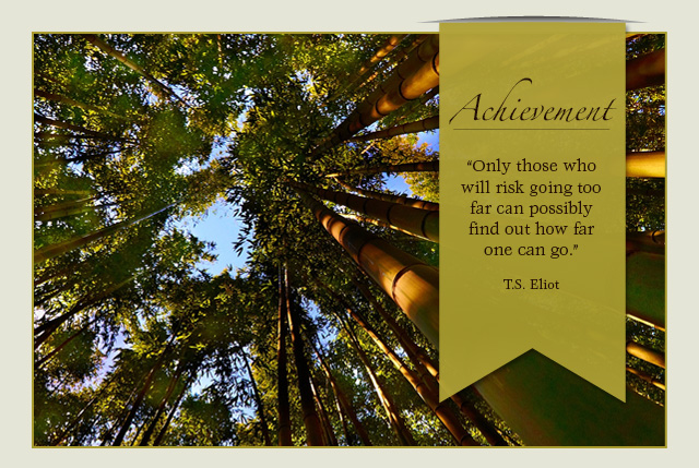 Achievement: Only those who will risk going too far can possibly find out how far one can go. -- T.S. Eliot