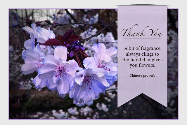 Thank You - A bit of fragrance always clings to the hand that gives you flowers. -- Chinese proverb