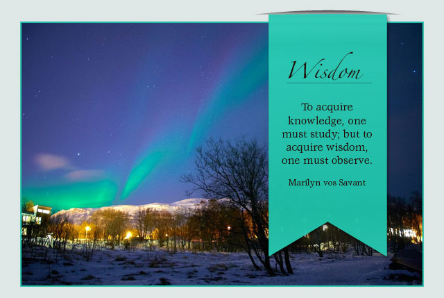 Wisdom - To acquire knowledge, one must study; but to acquire wisdom, one must observe. -- Marilyn vos Savant