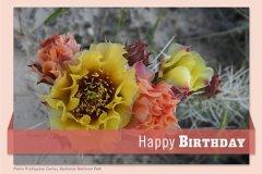 Callout Birthday3
