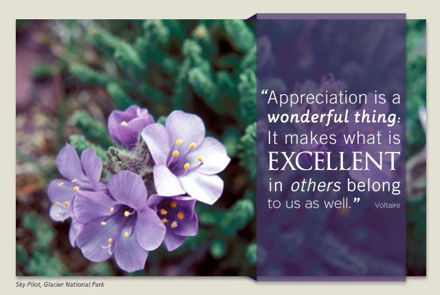 Appreciation is a wonderful thing: It makes what is excellent in others belong to us as well. -- Voltaire