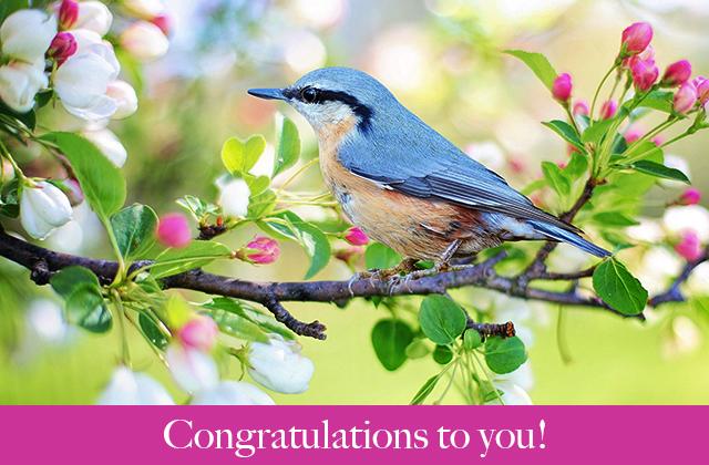 Congratulations to you!