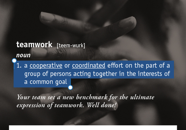 teamwork [teem-wurk] 