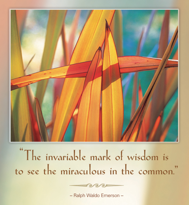 The invariable mark of wisdom is to see the miraculous in the common. -- Ralph Waldo Emerson