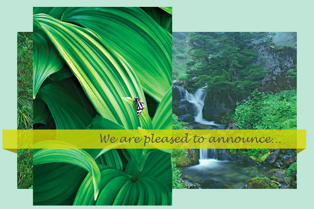 We are pleased to announce...