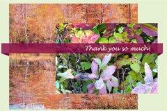Layers Thankyou1