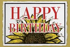 Lp Birthday