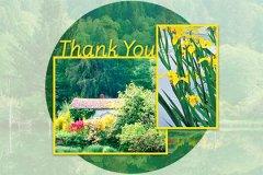 Ls Thankyou3