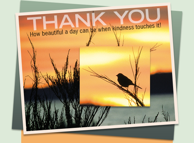 Thank You eCard How beautiful a day can be when kindness touches it!