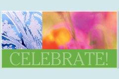 Macro Celebrate