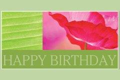 Macro Happy Birthday2