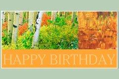 Macro Happy Birthday3