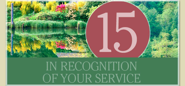 In recognition of your service - 15 years