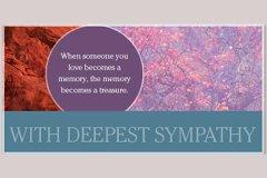 Macro Sympathy1