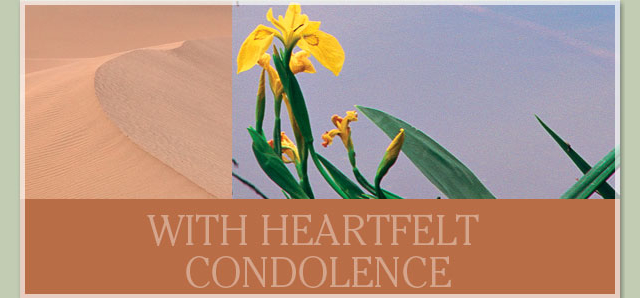 With heartfelt condolence