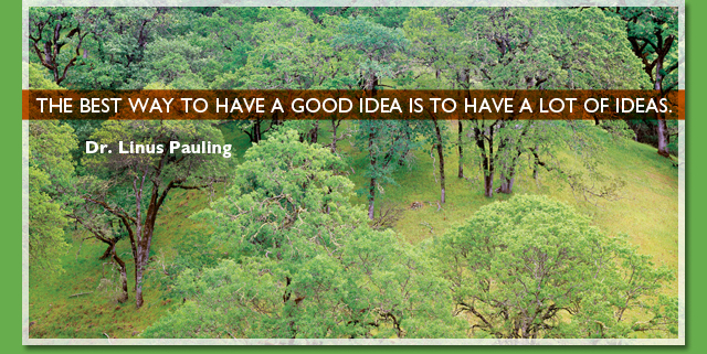 The best way to have a good idea is to have a lot of ideas. -- Dr. Linus Pauling