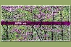 Photo Band Thank You1