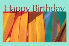 Photo Big Letters Happy Birthday3