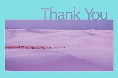 Photo Big Letters Thank You6