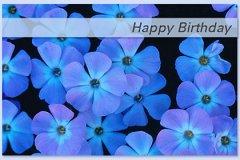 Photo Birthday