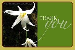 Postcard Thankyou1
