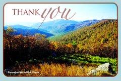 Postcard Thankyou2