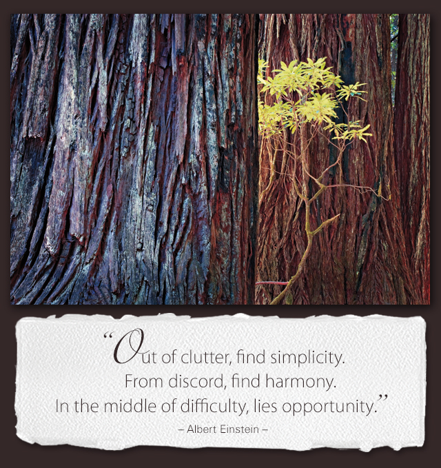 Out of clutter, find simplicity. From discord, find harmony. In the middle of difficulty, lies opportunity. --Albert Einstein