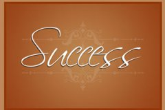 Script Success