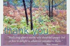 Thankyou Bh