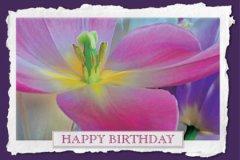 Watercolor Birthday2