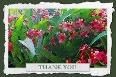 Watercolor Thankyou