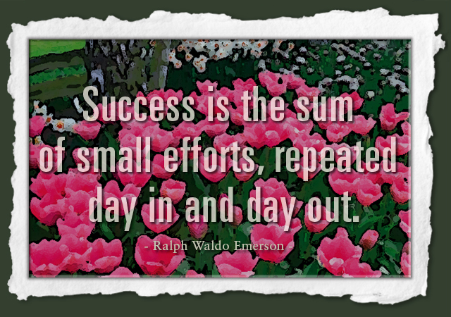 Success is the sum of small efforts, repeated day in and day out. -- Ralph Waldo Emerson