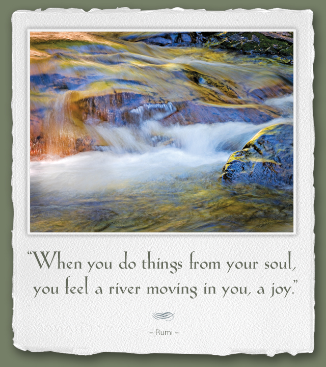 When you do things from your soul, you feel a river moving in you, a joy. --Rumi